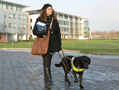 THIRD CITY WIN BRIEF TO GIVE GUIDE DOGS WEEK MAJOR BOOST IN 2013 image